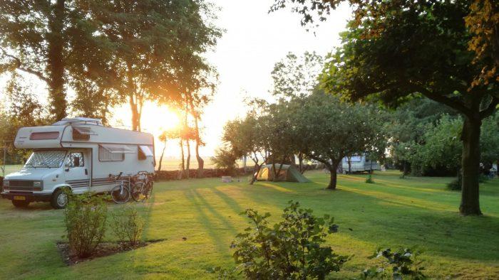 De rand van de boomgaard met zonsondergang.